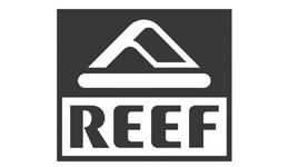 Reef é cliente Pictore